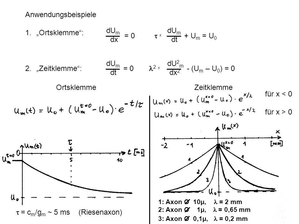Anwendungsbeispiele 1.Ortsklemme: 2. Zeitklemme: = 0 2 x - (U m – U 0 ) = 0 dU m dx = 0 x + U m = U 0 dU m dt dU m dt dU 2 m dx 2 Ortsklemme Zeitklemm