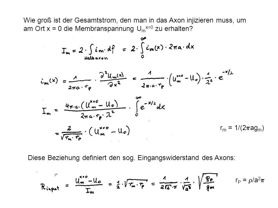 Wie groß ist der Gesamtstrom, den man in das Axon injizieren muss, um am Ort x = 0 die Membranspannung U m x=0 zu erhalten? Diese Beziehung definiert