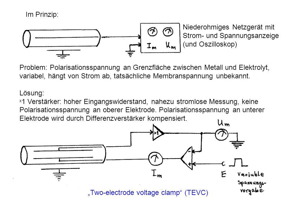 Two-electrode voltage clamp (TEVC) Im Prinzip: Niederohmiges Netzgerät mit Strom- und Spannungsanzeige (und Oszilloskop) Problem: Polarisationsspannun