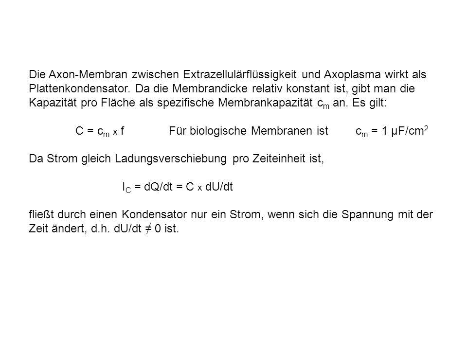Beispiel: normale Ionenkonzentrationen: Sprung auf -9 mV Kurve A Änderung von Na + außen so dass E Na = - 9 mV i Na = 0 Kurve B = i K Differenz aus Kurve B und Kurve A: Kurve C = i Na Voraussetzung: Ionenfluss von Natrium unabhängig von Kaliumkonzentration (und umgekehrt): Unabhängigkeitsprinzip