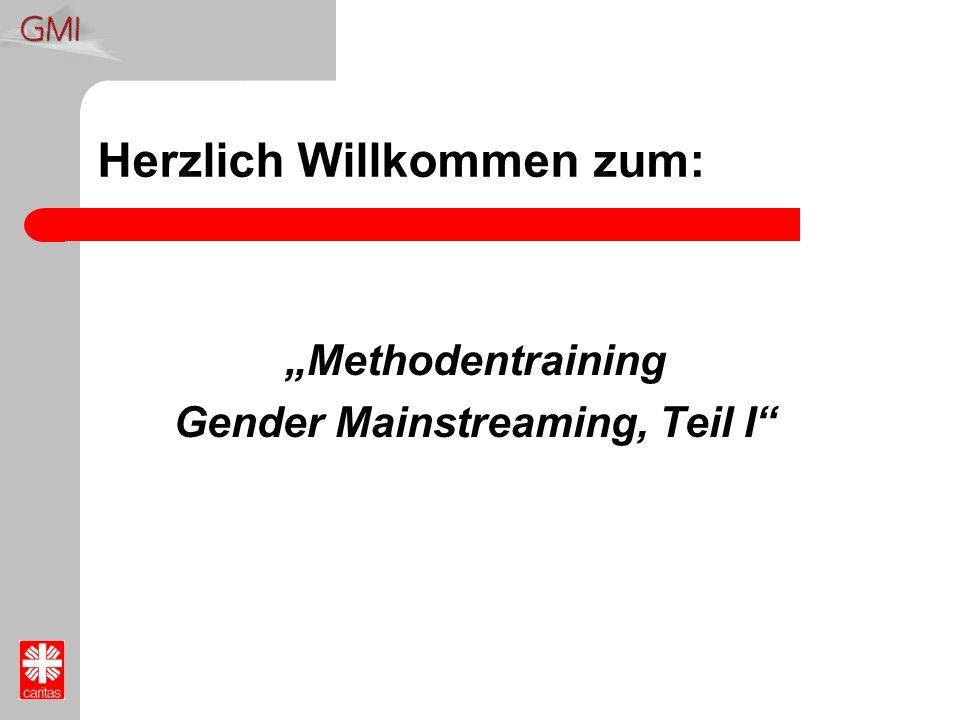 Herzlich Willkommen zum: Methodentraining Gender Mainstreaming, Teil I