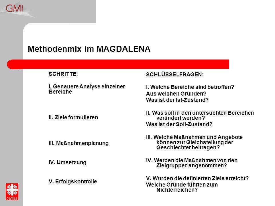 Methodenmix im MAGDALENA SCHRITTE: I. Genauere Analyse einzelner Bereiche II. Ziele formulieren III. Maßnahmenplanung IV. Umsetzung V. Erfolgskontroll