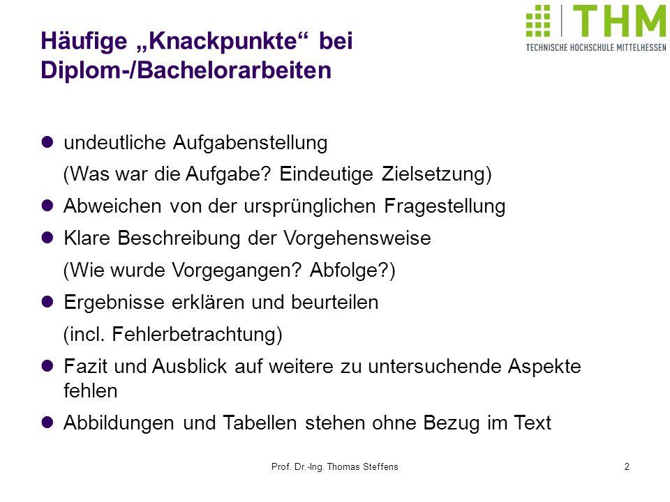 Prof.Dr.-Ing. Thomas Steffens13 Was gehört in den Anhang.