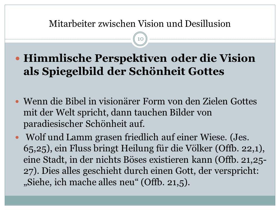Mitarbeiter zwischen Vision und Desillusion Himmlische Perspektiven oder die Vision als Spiegelbild der Schönheit Gottes Wenn die Bibel in visionärer