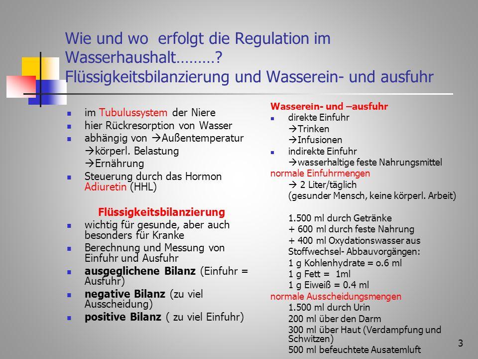 3 Wie und wo erfolgt die Regulation im Wasserhaushalt……….