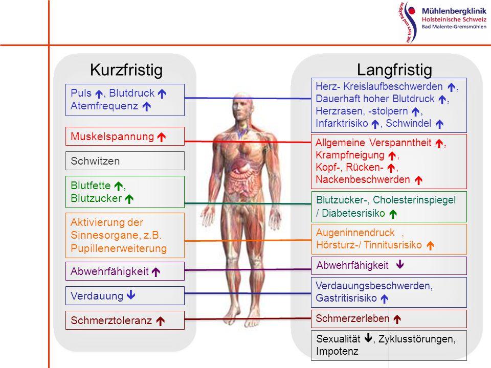Langfristig Kurzfristig Puls, Blutdruck Atemfrequenz Muskelspannung Allgemeine Verspanntheit, Krampfneigung, Kopf-, Rücken-, Nackenbeschwerden Schwitz