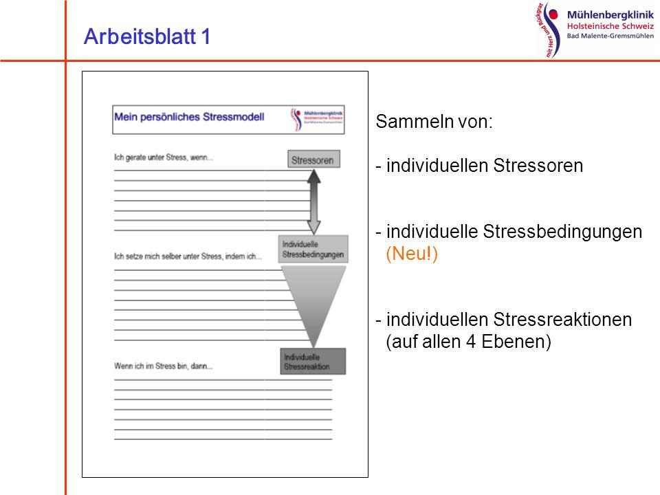 Sammeln von: - individuellen Stressoren - individuelle Stressbedingungen (Neu!) - individuellen Stressreaktionen (auf allen 4 Ebenen) Arbeitsblatt 1