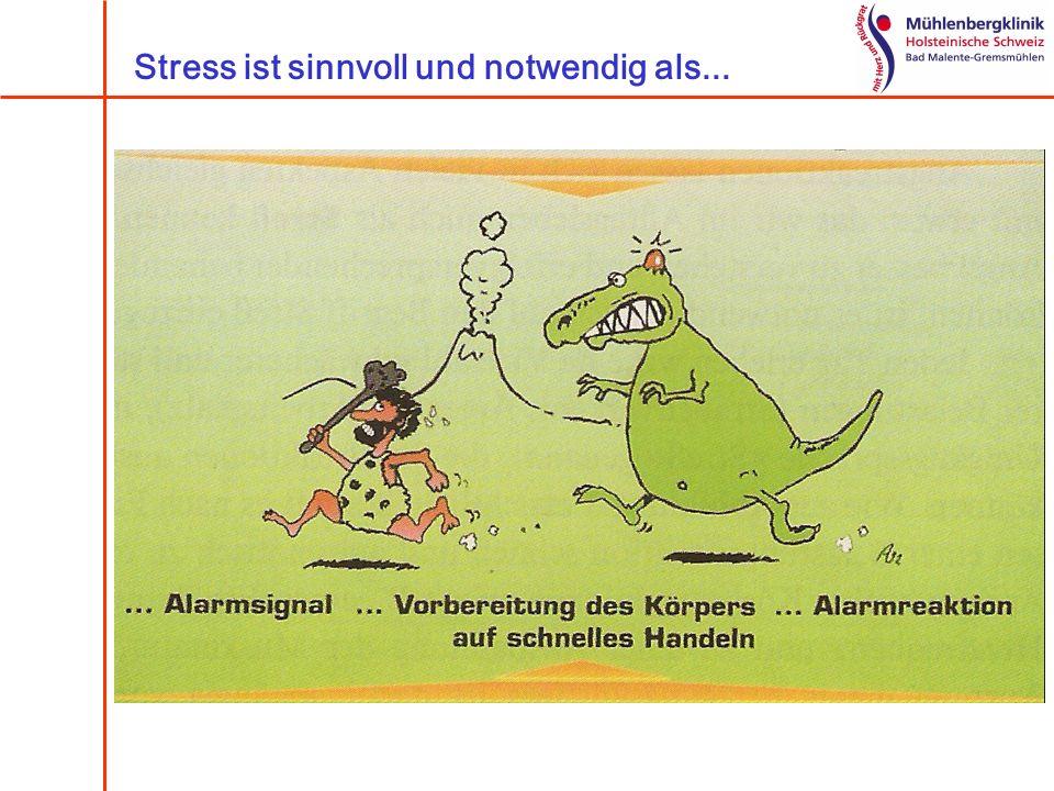 4 Ebenen der Stressreaktion Körperliche Ebene Verhaltensebene Gefühlsebene Gedankenebene