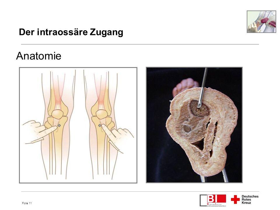 Folie 11 Anatomie 11 Der intraossäre Zugang
