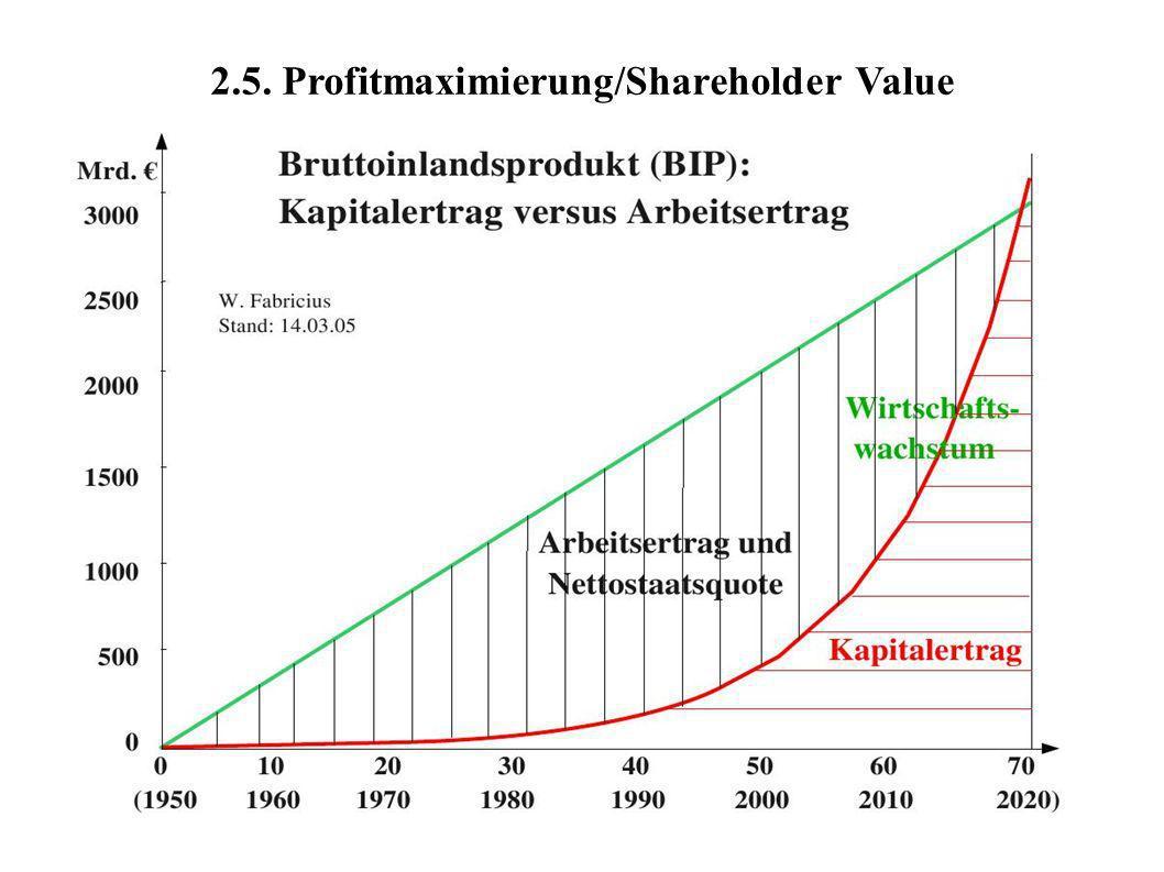 2.5. Profitmaximierung/Shareholder Value