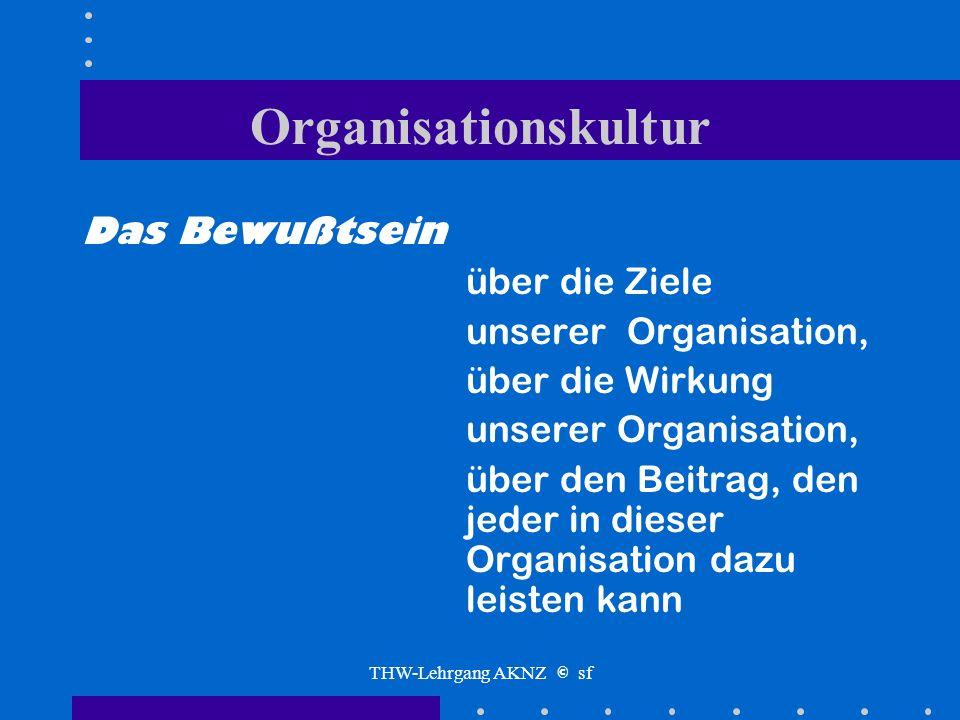 THW-Lehrgang AKNZ © sf Bewußtsein Gibt es ein Organisationsbewußtsein?