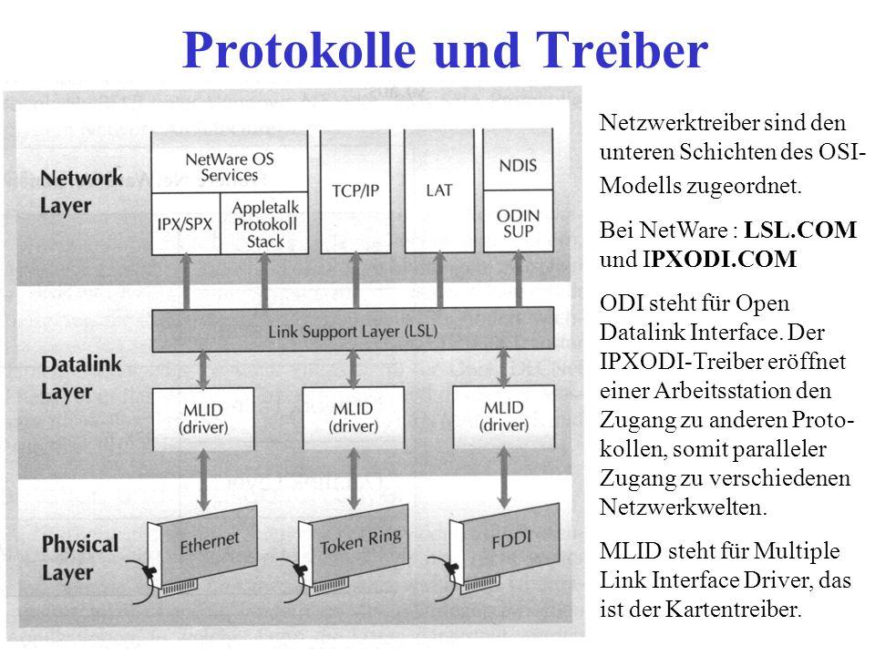 Protokolle und Treiber Netzwerktreiber sind den unteren Schichten des OSI- Modells zugeordnet. Bei NetWare : LSL.COM und IPXODI.COM ODI steht für Open
