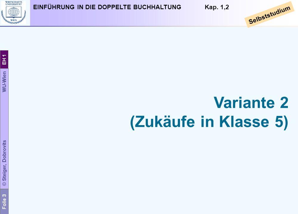Folie 3 © Steiger, Dobrovits WU-Wien EH 1 EINFÜHRUNG IN DIE DOPPELTE BUCHHALTUNG Kap. 1,2 Selbststudium Variante 2 (Zukäufe in Klasse 5)