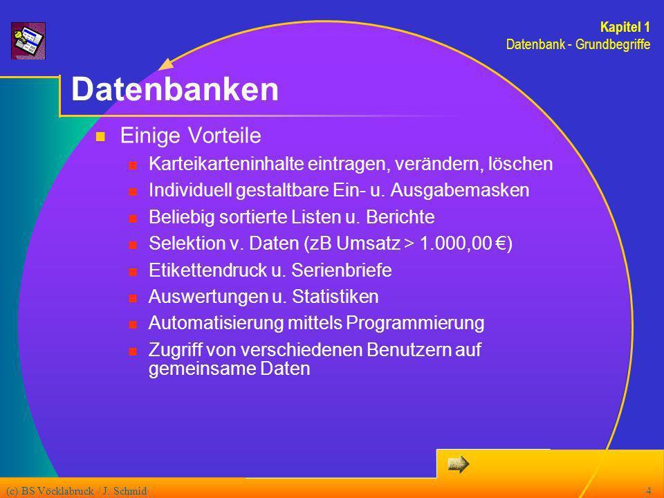 (c) BS Vöcklabruck / J. Schmid4 Datenbanken Kapitel 1 Datenbank - Grundbegriffe Einige Vorteile Karteikarteninhalte eintragen, verändern, löschen Indi
