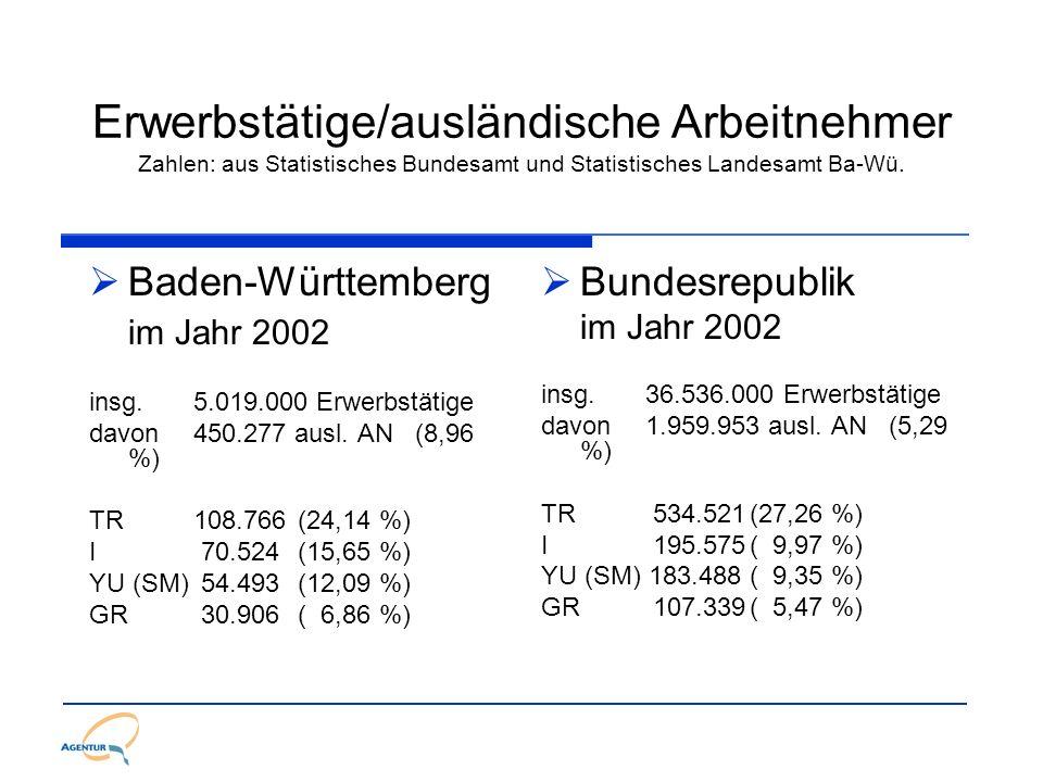 Schulabschluss allgemeinbildende Schulen in der BRD Schuljahr 2000/2001 Deutsche 8,6 % Ohne Hauptschulabschluss 24,2 % Hauptschulabschluss 41,7 % Realschulabschluss 25,5 % Hochschulreife incl.