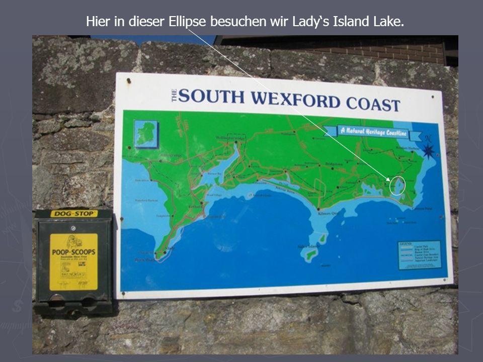 Hier in dieser Ellipse besuchen wir Ladys Island Lake.