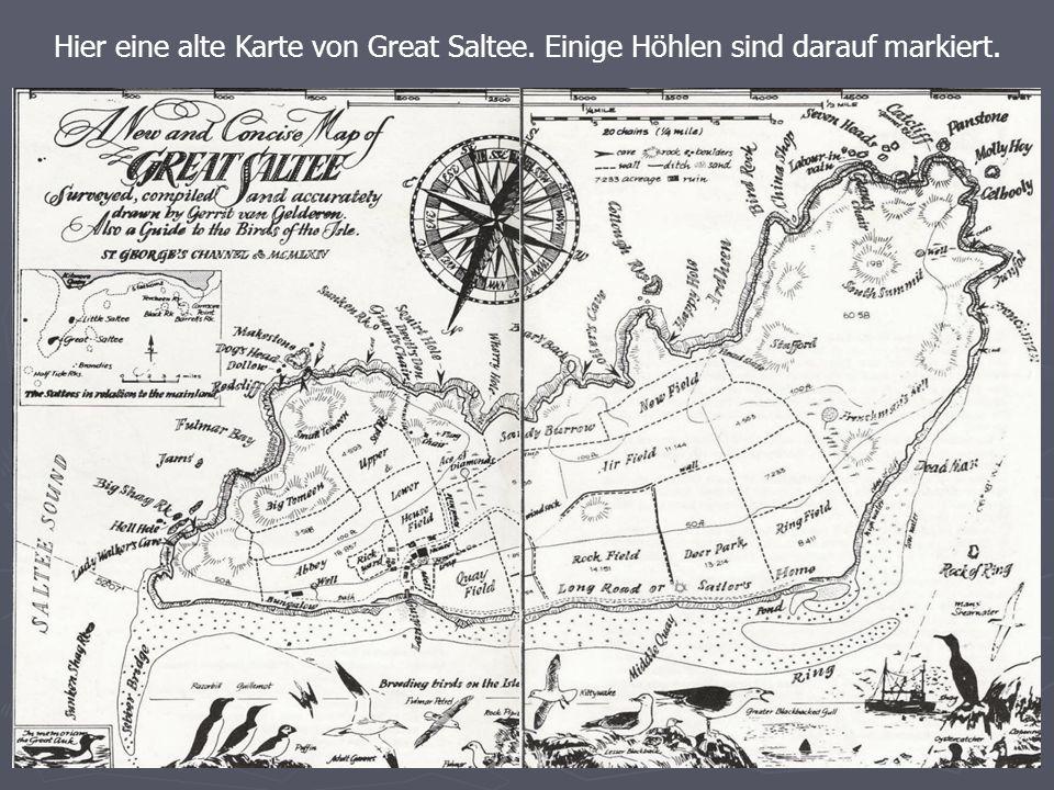 Hier eine alte Karte von Great Saltee. Einige Höhlen sind darauf markiert.