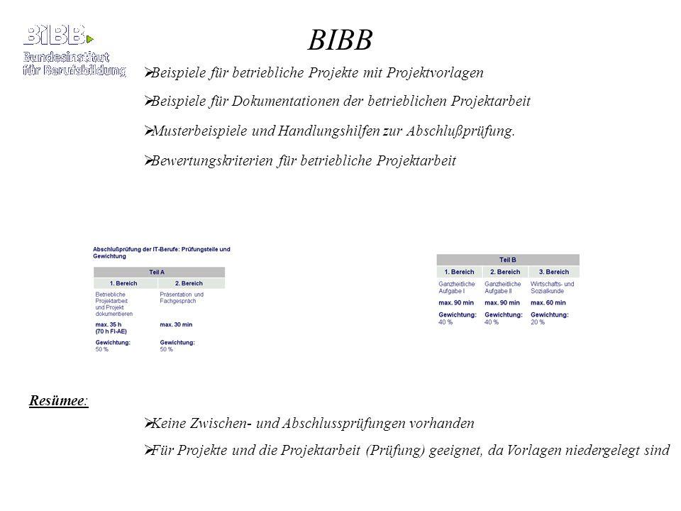 BIBB Beispiele für betriebliche Projekte mit Projektvorlagen Musterbeispiele und Handlungshilfen zur Abschlußprüfung. Beispiele für Dokumentationen de