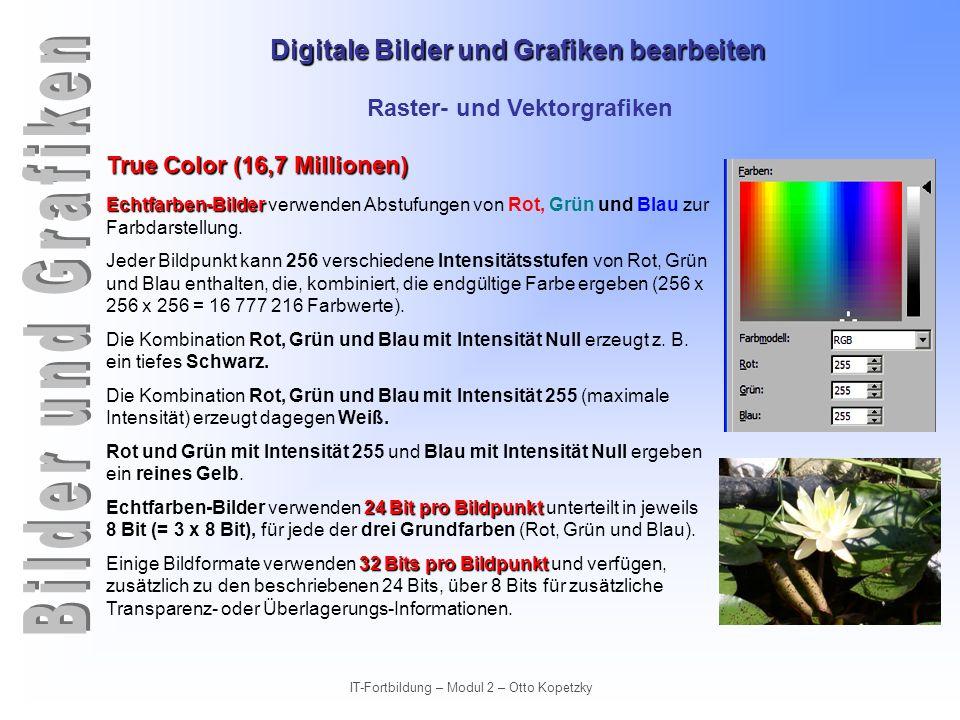 Digitale Bilder und Grafiken bearbeiten IT-Fortbildung – Modul 2 – Otto Kopetzky Raster- und Vektorgrafiken True Color (16,7 Millionen) Echtfarben-Bil