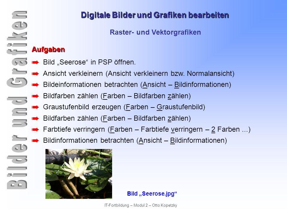 Digitale Bilder und Grafiken bearbeiten IT-Fortbildung – Modul 2 – Otto Kopetzky Raster- und Vektorgrafiken Aufgaben Bild Seerose in PSP öffnen. Ansic