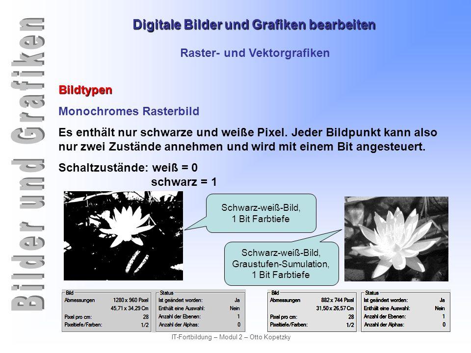 Digitale Bilder und Grafiken bearbeiten IT-Fortbildung – Modul 2 – Otto Kopetzky Raster- und Vektorgrafiken Gegenüberstellung von Vor- und Nachteilen ArtVektorgrafikRastergrafik DarstellungObjektorientiertBitmap (Pixel), naturgetreu Treppenstufeneffekt (Aliasing) Frei skalierbar ohne Qualitätsverlust.