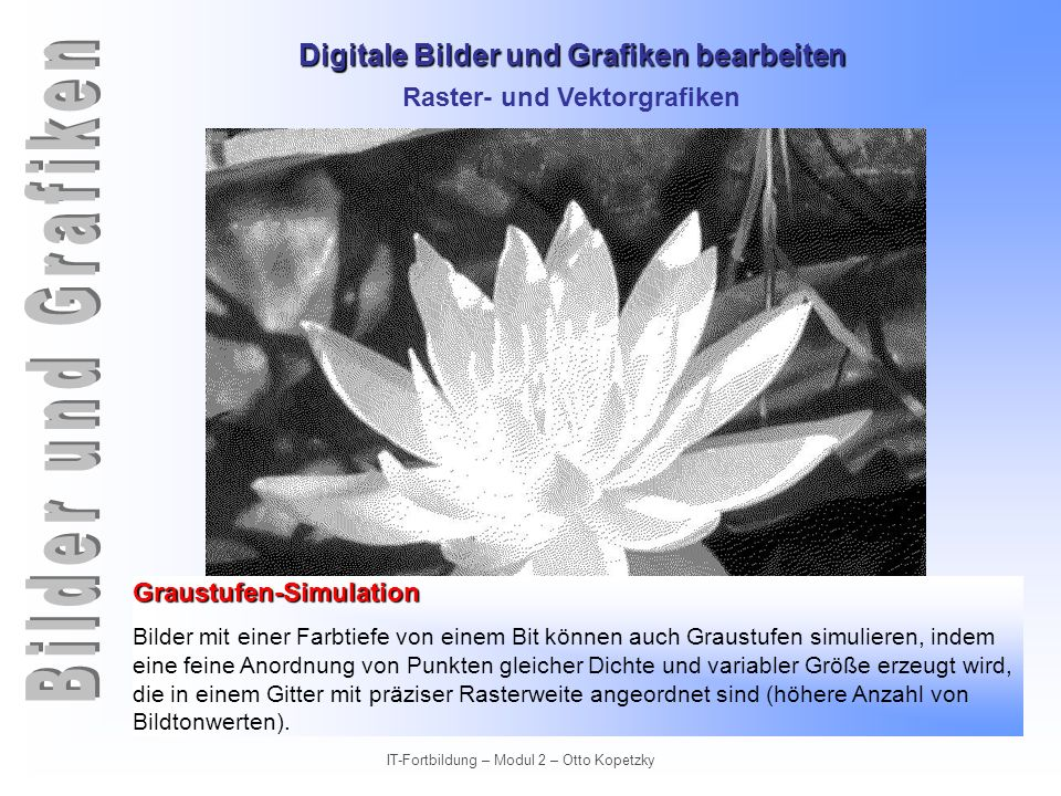 Digitale Bilder und Grafiken bearbeiten IT-Fortbildung – Modul 2 – Otto Kopetzky Raster- und Vektorgrafiken Graustufenbilder Graustufenbilder können Schwarz, Weiß und verschiedene Grautöne enthalten.