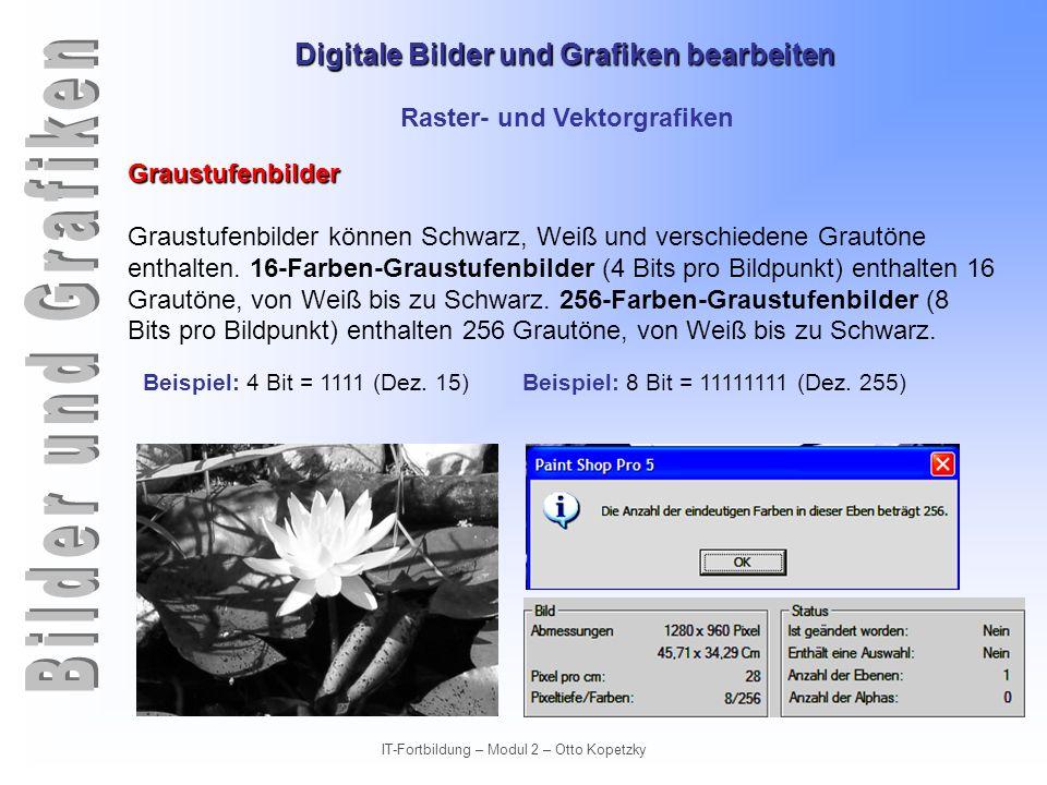 Digitale Bilder und Grafiken bearbeiten IT-Fortbildung – Modul 2 – Otto Kopetzky Raster- und Vektorgrafiken Indizierte Farben (16 und 256) Indizierte oder Farbtabellen-Bilder enthalten Farben, die aus einer Tabelle mit Farbwerten stammen.