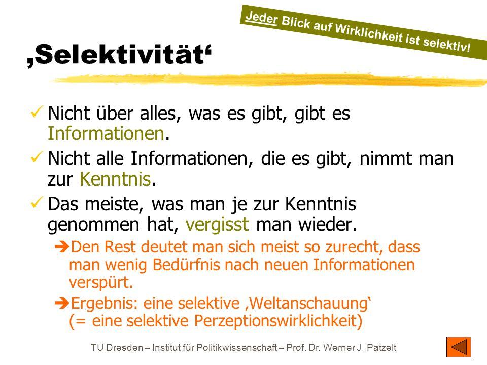 TU Dresden – Institut für Politikwissenschaft – Prof. Dr. Werner J. Patzelt Selektivität Nicht über alles, was es gibt, gibt es Informationen. Nicht a