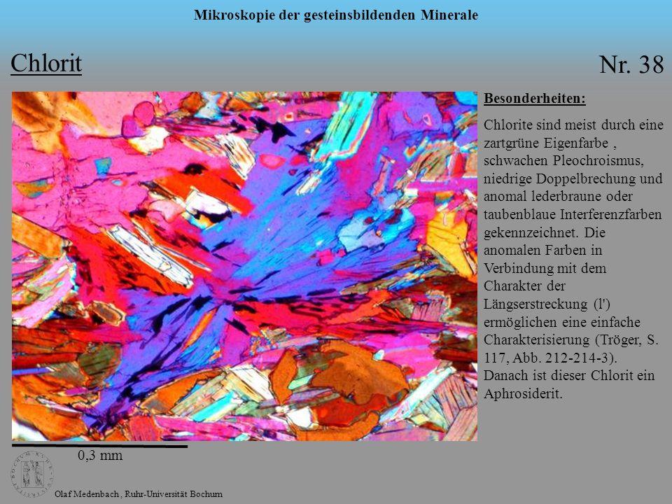 Olaf Medenbach, Ruhr-Universität Bochum Mikroskopie der gesteinsbildenden Minerale Chlorit Nr. 38 Besonderheiten: Chlorite sind meist durch eine zartg