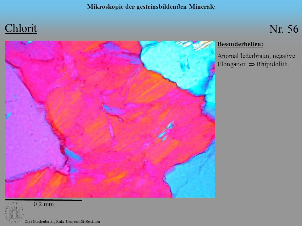 Olaf Medenbach, Ruhr-Universität Bochum Mikroskopie der gesteinsbildenden Minerale Chlorit Nr. 56 Besonderheiten: Anomal lederbraun, negative Elongati