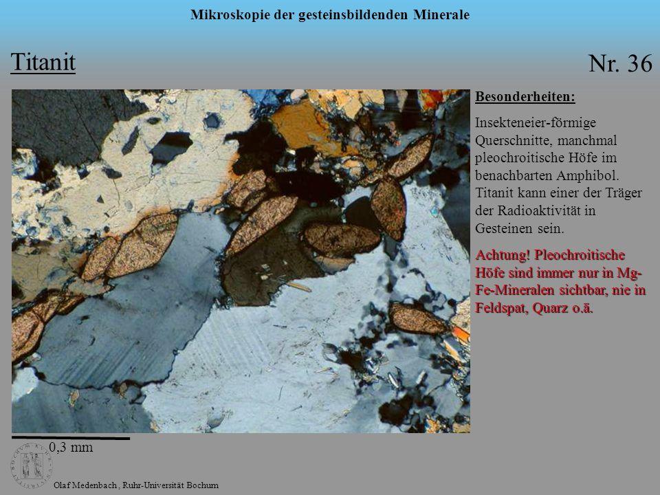 Olaf Medenbach, Ruhr-Universität Bochum Mikroskopie der gesteinsbildenden Minerale Titanit Nr. 36 Besonderheiten: Insekteneier-förmige Querschnitte, m