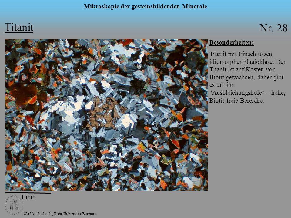 Olaf Medenbach, Ruhr-Universität Bochum Mikroskopie der gesteinsbildenden Minerale Titanit Nr. 28 Besonderheiten: Titanit mit Einschlüssen idiomorpher