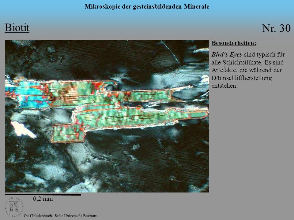 Olaf Medenbach, Ruhr-Universität Bochum Mikroskopie der gesteinsbildenden Minerale Biotit Nr. 30 Besonderheiten: Bird's Eyes sind typisch für alle Sch