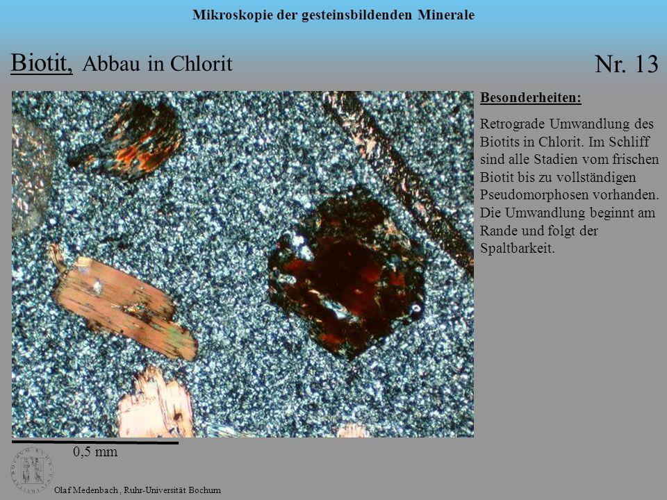 Olaf Medenbach, Ruhr-Universität Bochum Mikroskopie der gesteinsbildenden Minerale Biotit, Abbau in Chlorit Nr. 13 Besonderheiten: Retrograde Umwandlu