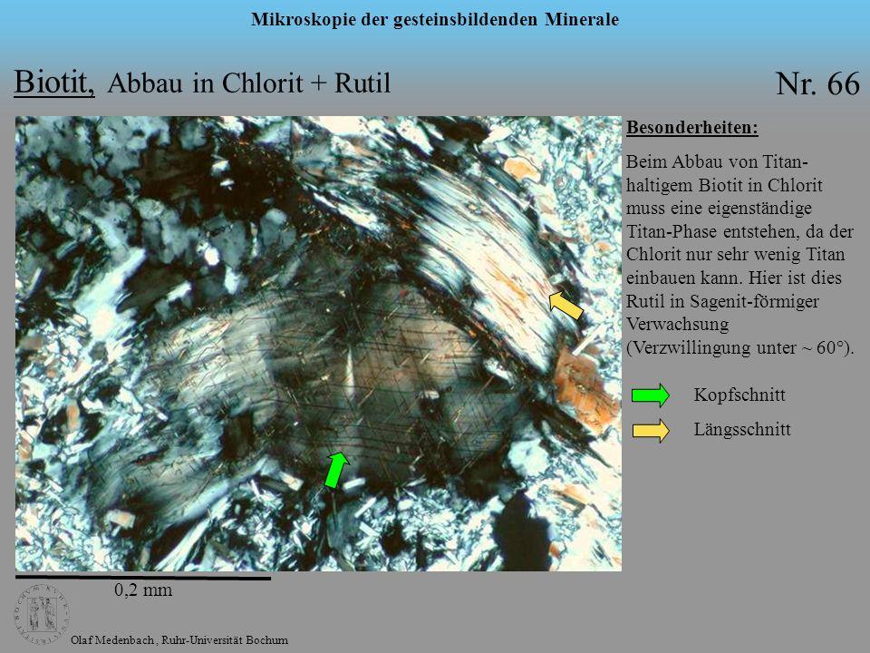 Olaf Medenbach, Ruhr-Universität Bochum Mikroskopie der gesteinsbildenden Minerale Nr. 66 Besonderheiten: Beim Abbau von Titan- haltigem Biotit in Chl