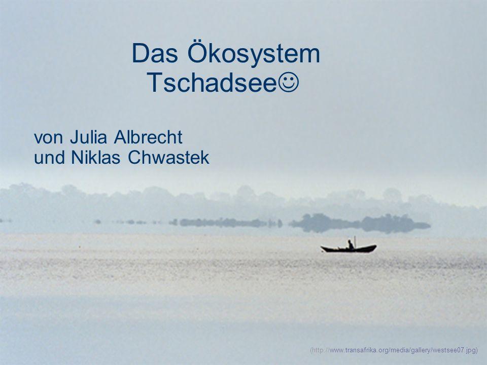 Das Ökosystem Tschadsee von Julia Albrecht und Niklas Chwastek (http://www.transafrika.org/media/gallery/westsee07.jpg)