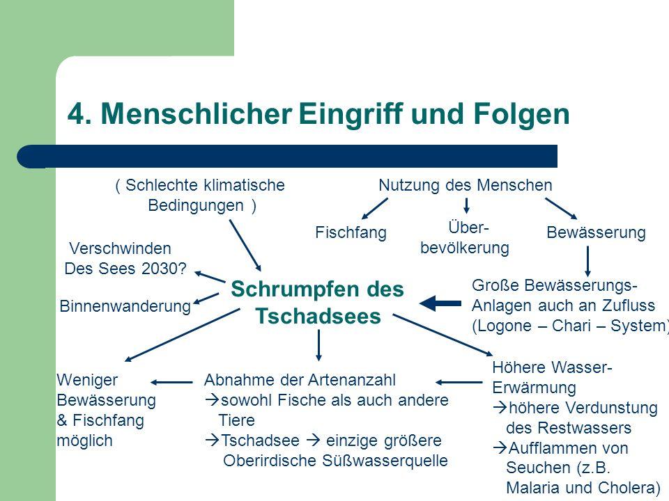 4. Menschlicher Eingriff und Folgen Nutzung des Menschen FischfangBewässerung Große Bewässerungs- Anlagen auch an Zufluss (Logone – Chari – System) Sc