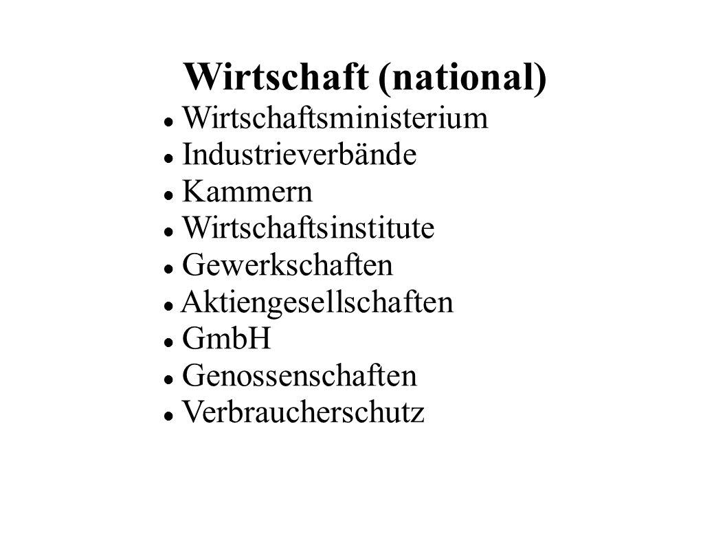Wirtschaft (national) Wirtschaftsministerium Industrieverbände Kammern Wirtschaftsinstitute Gewerkschaften Aktiengesellschaften GmbH Genossenschaften Verbraucherschutz