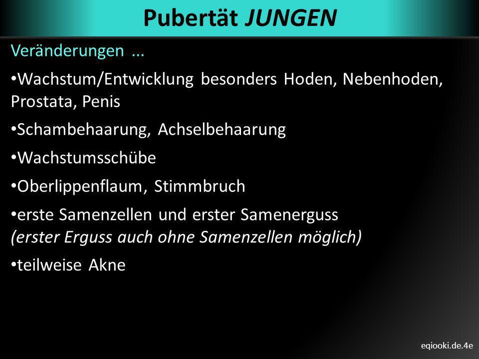 eqiooki.de.4e Pubertät JUNGEN Veränderungen... Wachstum/Entwicklung besonders Hoden, Nebenhoden, Prostata, Penis Schambehaarung, Achselbehaarung Wachs