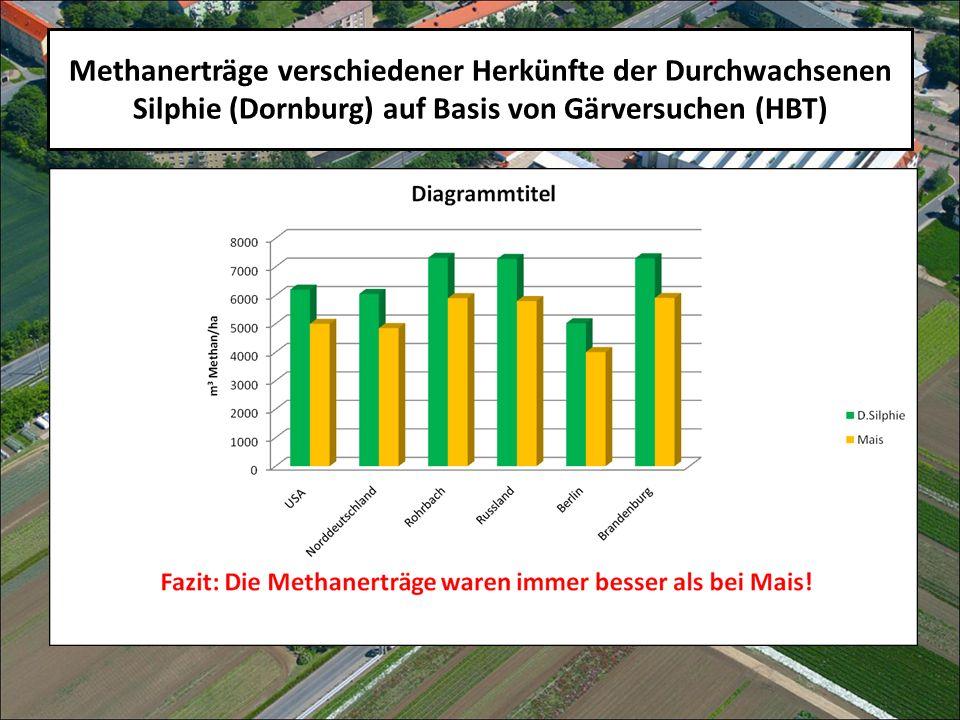 Methanerträge verschiedener Herkünfte der Durchwachsenen Silphie (Dornburg) auf Basis von Gärversuchen (HBT)