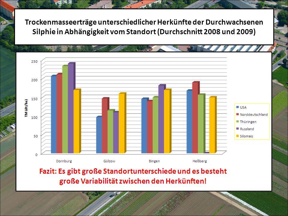Trockenmasseerträge unterschiedlicher Herkünfte der Durchwachsenen Silphie in Abhängigkeit vom Standort (Durchschnitt 2008 und 2009)