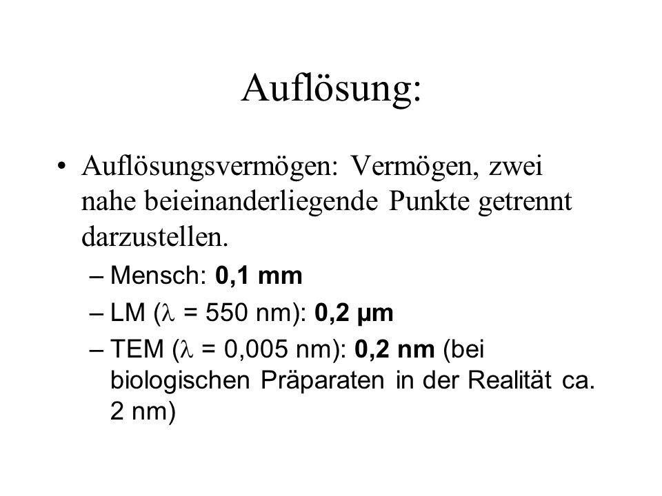 Auflösung: Auflösungsvermögen: Vermögen, zwei nahe beieinanderliegende Punkte getrennt darzustellen. –Mensch: 0,1 mm –LM ( = 550 nm): 0,2 µm –TEM ( =