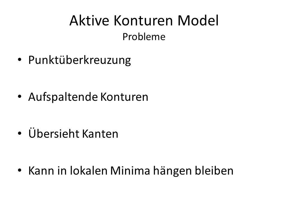 Aktive Konturen Model Probleme Punktüberkreuzung Aufspaltende Konturen Übersieht Kanten Kann in lokalen Minima hängen bleiben