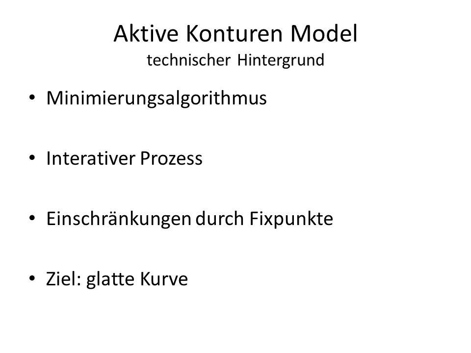 Aktive Konturen Model technischer Hintergrund Minimierungsalgorithmus Interativer Prozess Einschränkungen durch Fixpunkte Ziel: glatte Kurve