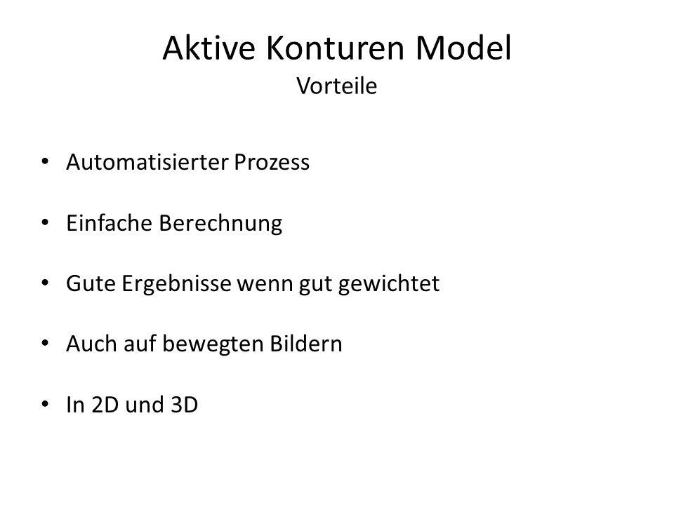 Aktive Konturen Model Vorteile Automatisierter Prozess Einfache Berechnung Gute Ergebnisse wenn gut gewichtet Auch auf bewegten Bildern In 2D und 3D