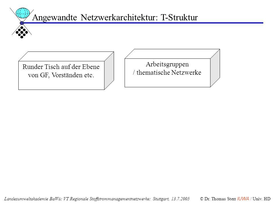 Runder Tisch auf der Ebene von GF, Vorständen etc. Arbeitsgruppen / thematische Netzwerke Angewandte Netzwerkarchitektur: T-Struktur Landesumweltakade