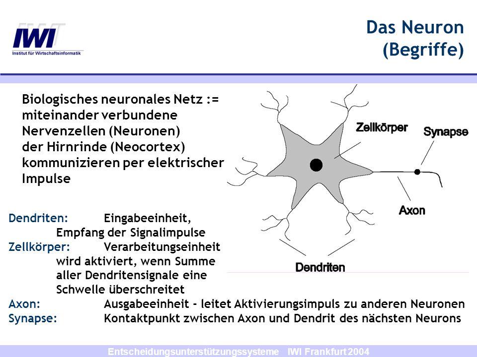 Entscheidungsunterstützungssysteme IWI Frankfurt 2004 Das Neuron (Begriffe) Dendriten:Eingabeeinheit, Empfang der Signalimpulse Zellkörper: Verarbeitu