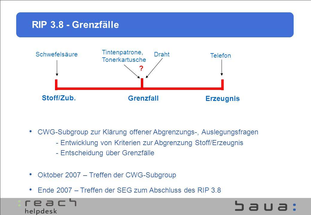 RIP 3.8 - Grenzfälle CWG-Subgroup zur Klärung offener Abgrenzungs-, Auslegungsfragen Oktober 2007 – Treffen der CWG-Subgroup Ende 2007 – Treffen der S