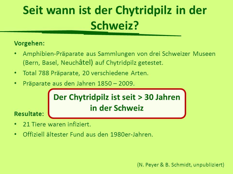 Seit wann ist der Chytridpilz in der Schweiz? Vorgehen: Amphibien-Präparate aus Sammlungen von drei Schweizer Museen (Bern, Basel, Neuch âtel) auf Chy