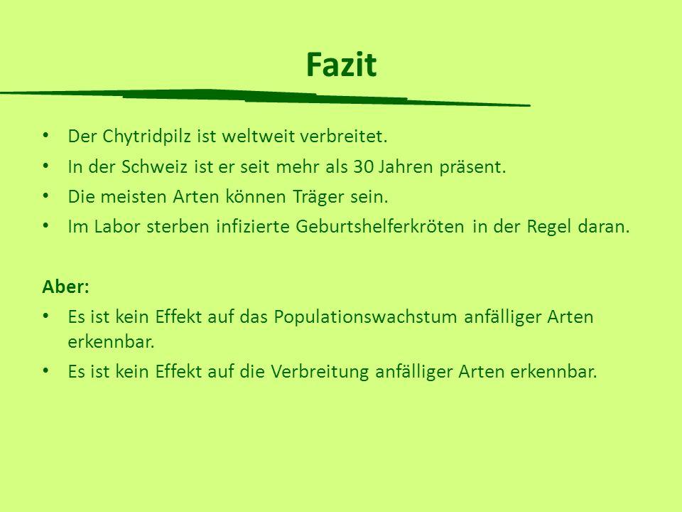 Fazit Der Chytridpilz ist weltweit verbreitet. In der Schweiz ist er seit mehr als 30 Jahren präsent. Die meisten Arten können Träger sein. Im Labor s